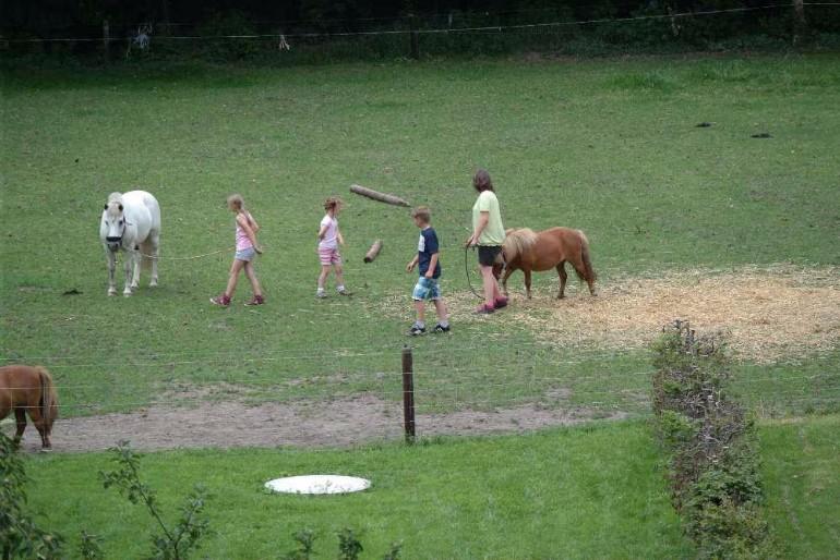 Ponyreiten auf dem Ferienhof